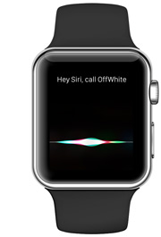 apple watch voice search seo